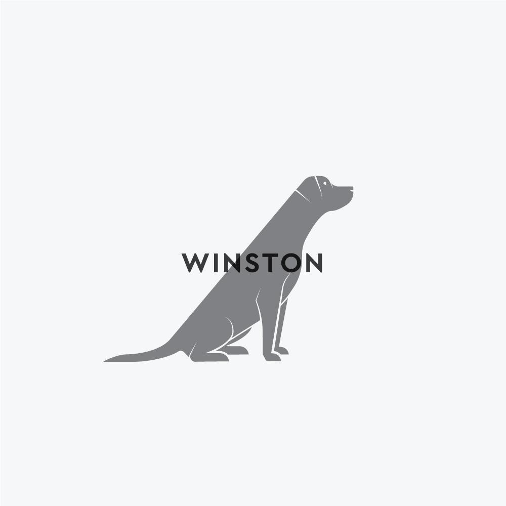 Logo_Wiston