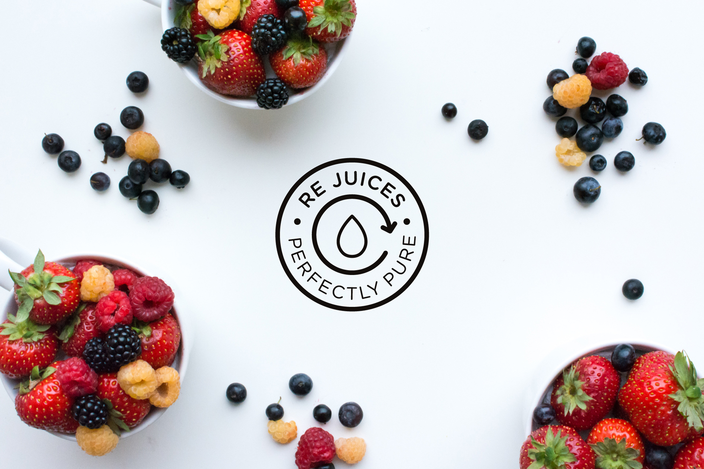 ReJuices_Branding_1